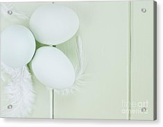 Fresh Ameraucana Eggs And Feathers Acrylic Print by Stephanie Frey