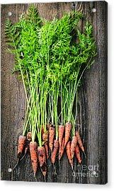 Fresh Carrots  Acrylic Print by Elena Elisseeva