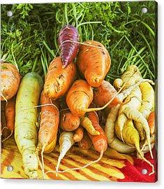 Fresh Carrots Acrylic Print by Vishwanath Bhat