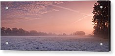 Fresh Cool Morning  Acrylic Print