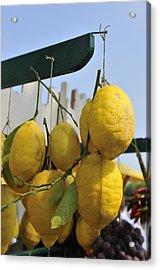 Fresh Lemons At The Market Acrylic Print by Matthias Hauser