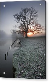 Fresh New Morning  Acrylic Print