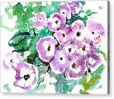 Fresh Pick No.378 Acrylic Print by Sumiyo Toribe