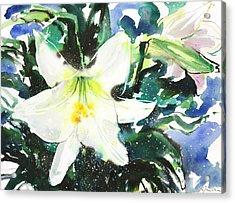 Fresh Pick No.386 Acrylic Print by Sumiyo Toribe