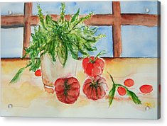 Fresh Picked Tomatoes And Basil Acrylic Print by Elaine Duras