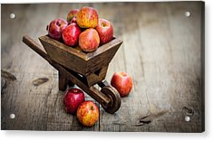 Fresh Red Apples Acrylic Print by Aged Pixel