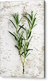 Fresh Rosemary Acrylic Print by Nailia Schwarz