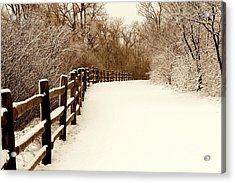 Fresh Snow Acrylic Print by Rosanne Jordan