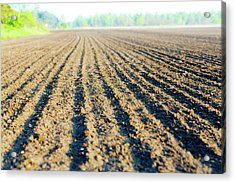 Freshly Ploughed Field Acrylic Print