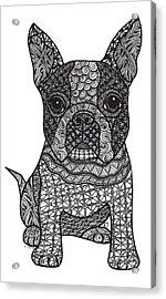 Friend - Boston Terrier Acrylic Print