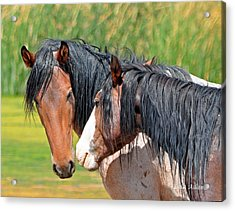 Friendly Acrylic Print