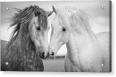 Friends Iv Acrylic Print