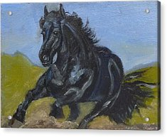 Acrylic Print featuring the painting Friesian by Jessmyne Stephenson