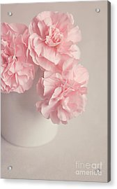Frilly Pink Carnations Acrylic Print by Lyn Randle