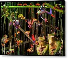 Frog Bog Acrylic Print