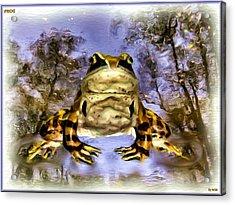Acrylic Print featuring the digital art Frog by Daniel Janda