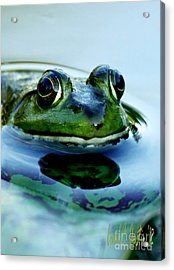 Green Frog I Only Have Eyes For You Acrylic Print