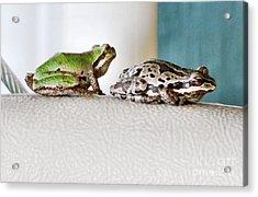 Frog Flatulence - A Case Study Acrylic Print