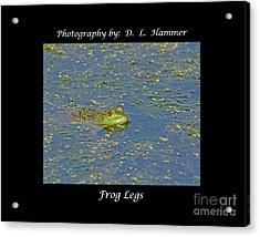 Frog Legs Acrylic Print by Dennis Hammer
