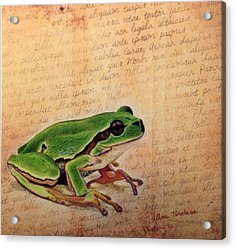 Frog On Paper Acrylic Print