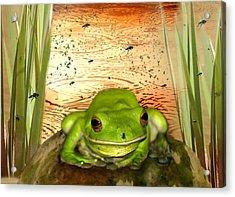Froggy Heaven Acrylic Print by Holly Kempe