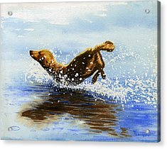 Frolicking Dog Acrylic Print