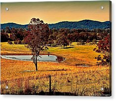 Acrylic Print featuring the photograph From A Distance by Wallaroo Images