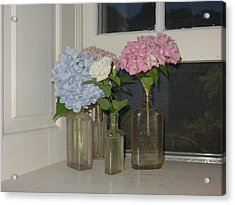 Acrylic Print featuring the photograph From My Window Sill  by Delona Seserman