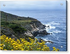 From The Cliffs Above Acrylic Print by Anthony Citro
