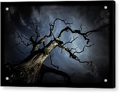 From The Darkness It Came Acrylic Print by Chris Fletcher