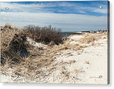From The Dunes Acrylic Print