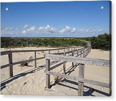 From The Dunes To The Marsh Acrylic Print