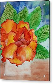 From The Garden Acrylic Print by Alethea McKee