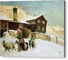 From Vaga Acrylic Print by Gustav Wentzel