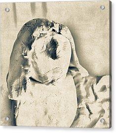 Frons-9978 Acrylic Print