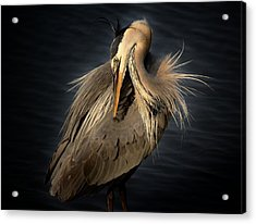 Front Cover Of The Grand Strand Magazine Acrylic Print by Paulette Thomas