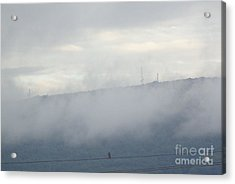 Acrylic Print featuring the photograph Front-row Seat by Christina Verdgeline