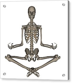 Front View Of Human Skeleton Meditating Acrylic Print