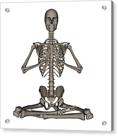 Front View Of Human Skeleton Meditation Acrylic Print
