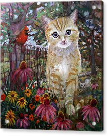 Front Yard Kitty Acrylic Print