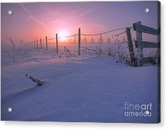 Frost And Fenceline Acrylic Print by Dan Jurak