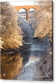 Acrylic Print featuring the photograph Frost And Ice by Jacqi Elmslie