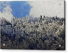 Frost Line 2 Acrylic Print by Tom Culver