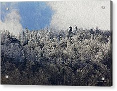 Frost Line Acrylic Print by Tom Culver