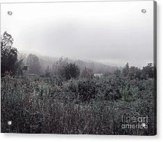 Frost On The Field Acrylic Print by Linda Marcille