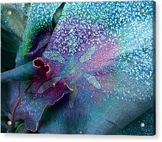 Frost On Turquoise Acrylic Print by Shirley Sirois