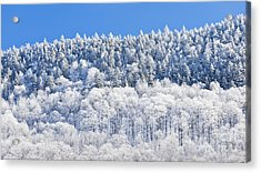Frosted Mountainside Acrylic Print by Alan L Graham