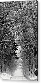 Frosted Steps II Acrylic Print