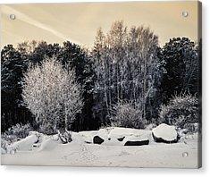 Frosted Trees Acrylic Print by Vladimir Kholostykh