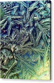 Frostian II Acrylic Print